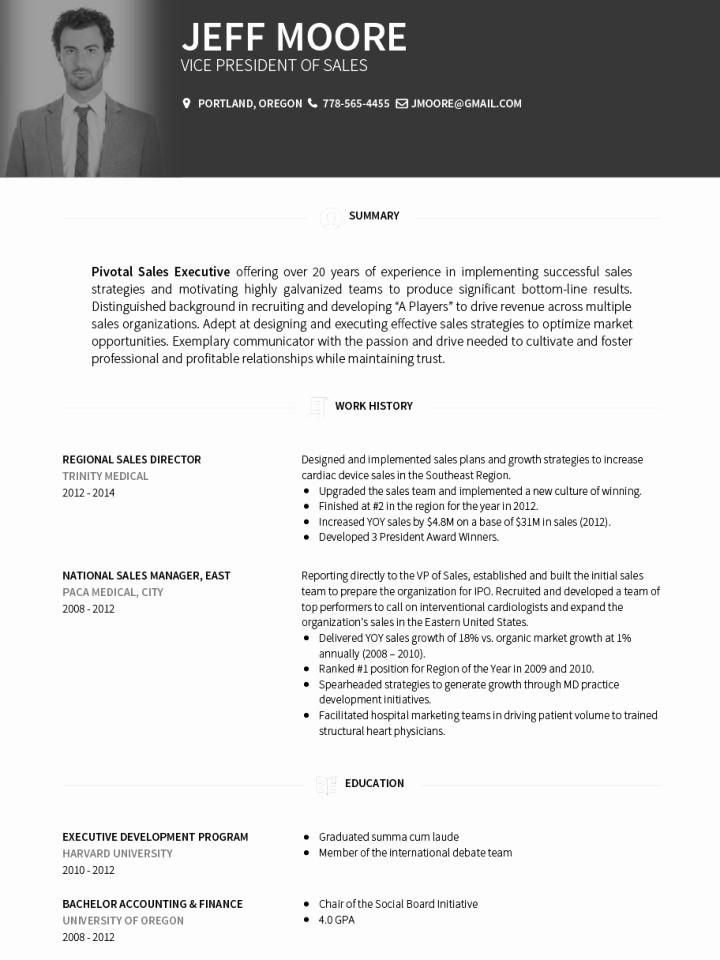 Professional Curriculum Vitae Template Download Unique Cv Templates Professional Curriculum Vitae Templates