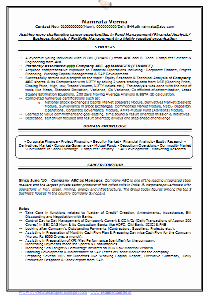 Professional Resume format Free Download Best Of Over Cv and Resume Samples with Free Download