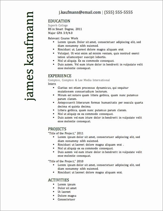 Professional Resume format Free Download Elegant 12 Resume Templates for Microsoft Word Free Download