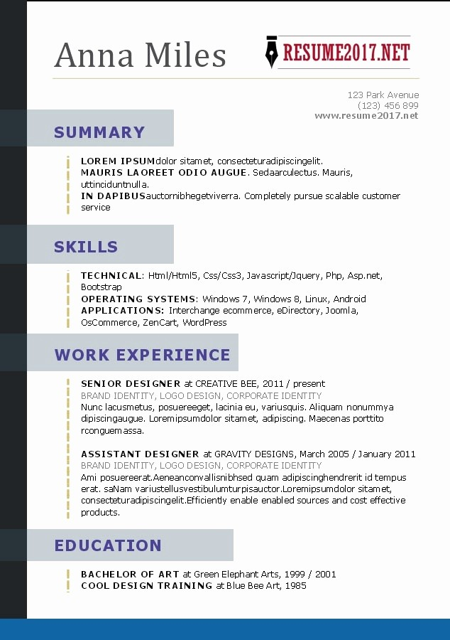 Professional Resume format Free Download Elegant Professional Resume Template 2017
