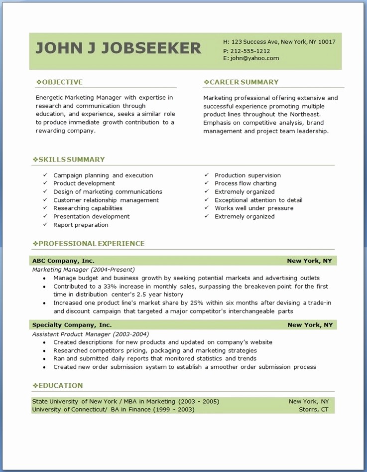 Professional Resume format Free Download New Best Professional Resume format Download