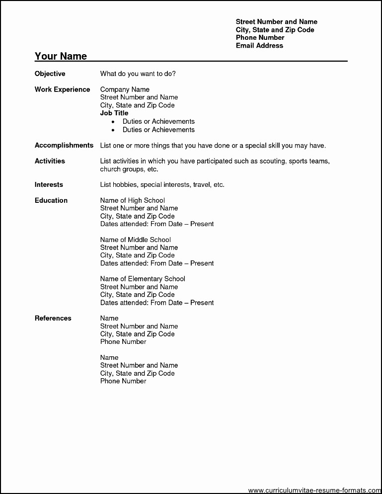 Professional Resume formats Free Download Beautiful Professional Resume format Pdf Free Download Free