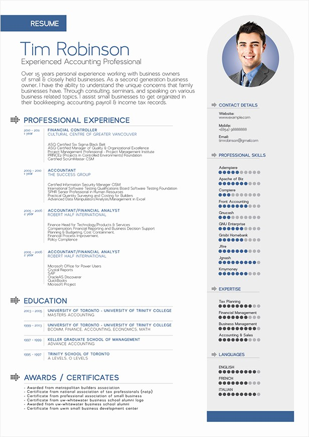 Professional Resume formats Free Download Inspirational Free Simple Professional Resume Template In Ai format