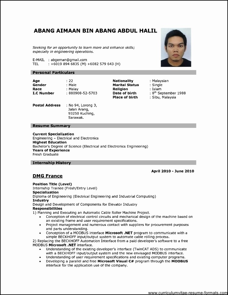 Professional Resume formats Free Download Unique Professional Resume format Download Pdf Free Samples