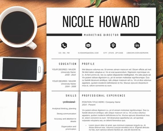 Professional Resume Template Microsoft Word Fresh Professional Resume Template 2017