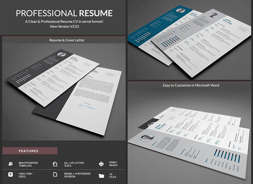 Professional Resume Template Microsoft Word Luxury 20 Professional Ms Word Resume Templates with Simple Designs