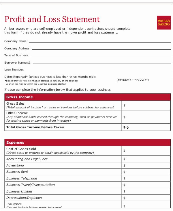 Profit & Loss Statement form Awesome 50 Sample Statement forms