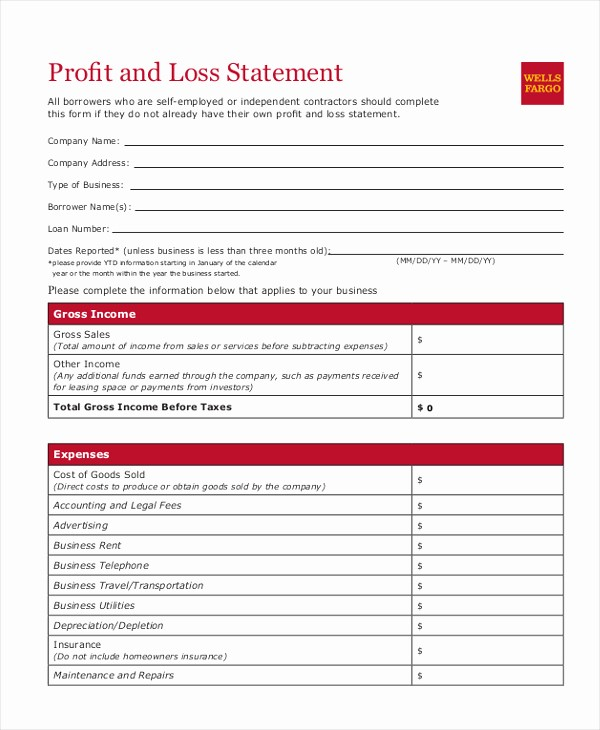 Profit & Loss Statement form New Sample A Profit and Loss Statement – Dicasminecraft