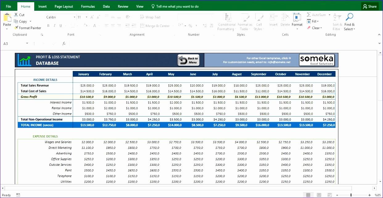 Profit & Loss Statement format Unique 12 Profit & Loss Excel Template Exceltemplates