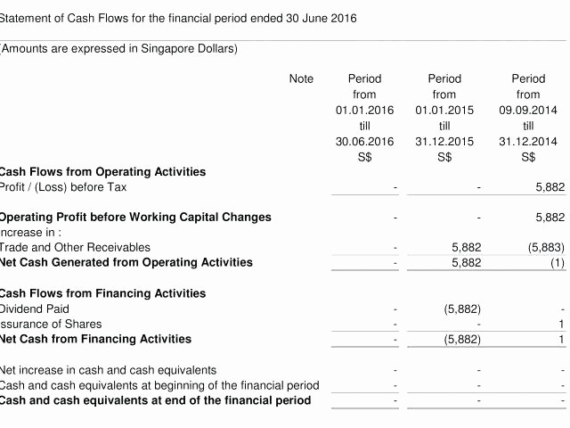 Profit and Loss Account Sheet Best Of Balance Sheet Profit and Loss Example – Template Gbooks