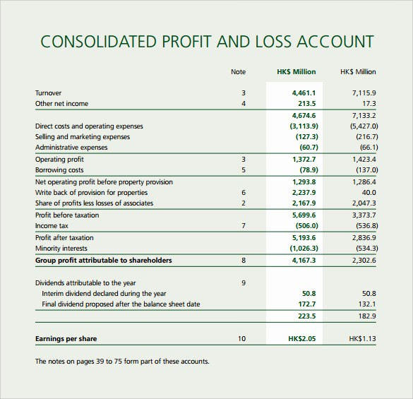 Profit and Loss Account Sheet Best Of Profit and Loss Template 20 Download Free Documents In