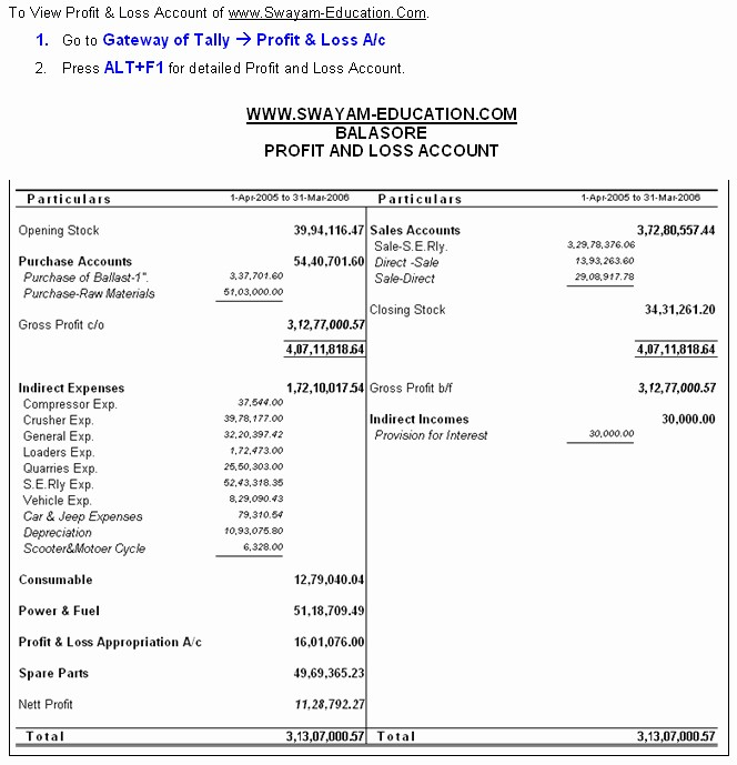 Profit and Loss Account Sheet Fresh Pany Balance Sheet and Profit and Loss Account format