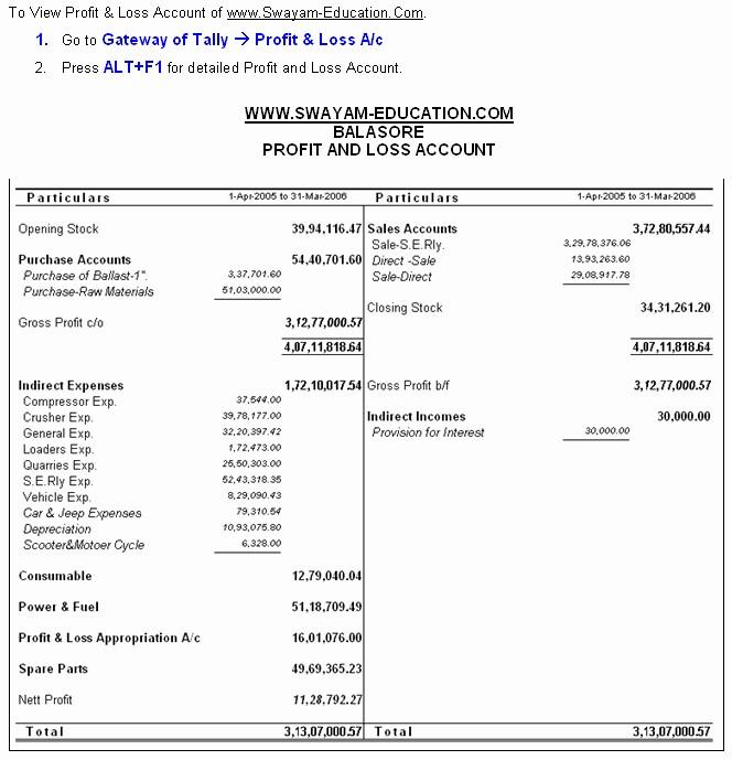 Profit and Loss Account Sheet Fresh Pany Balance Sheet and Profit and Loss Account format