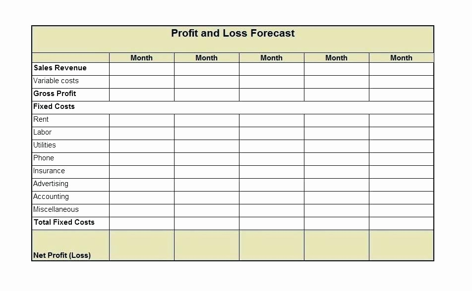 Profit and Loss Account Template Luxury Profit and Loss Balance Sheet Template – Buildingcontractor