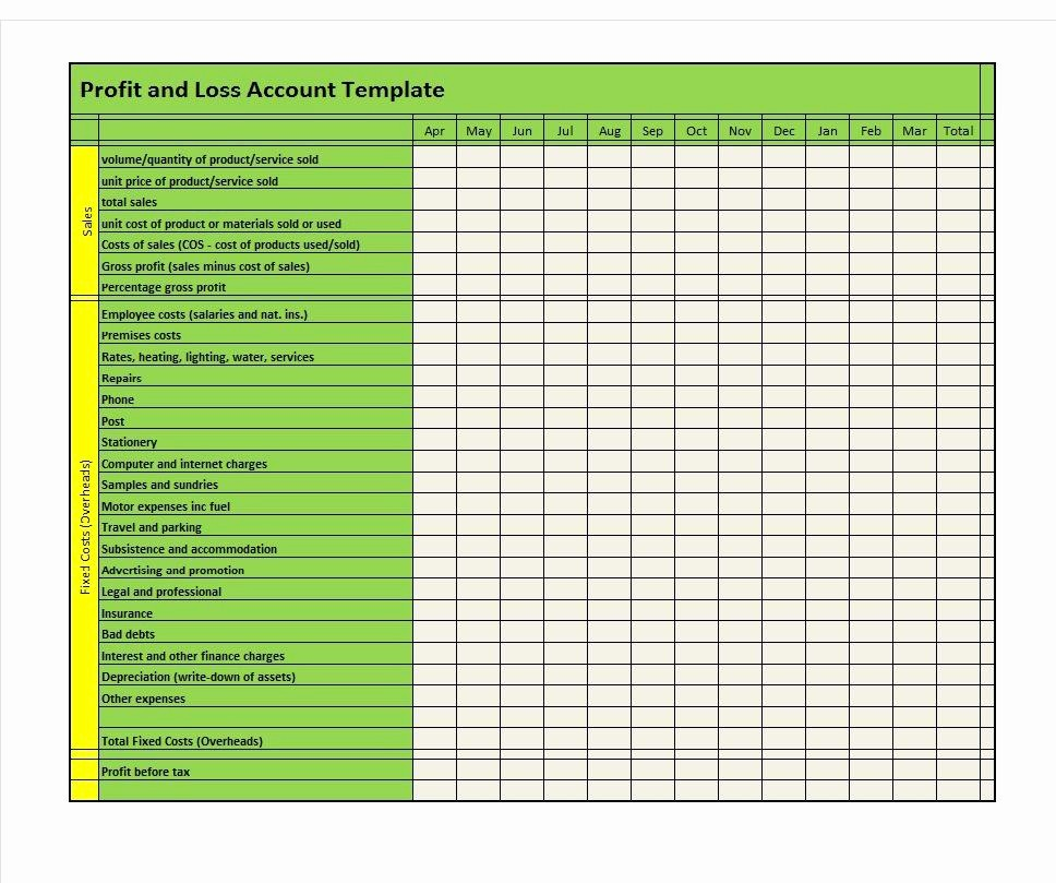 Profit and Loss Free Template Best Of 35 Profit and Loss Statement Templates & forms
