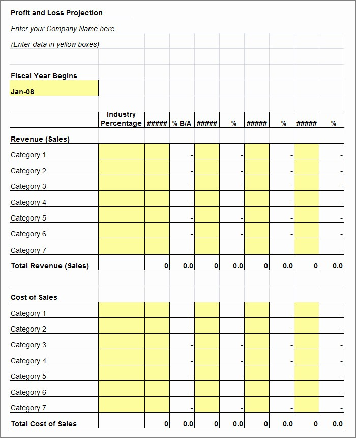 Profit and Loss Report Template Beautiful Remarkable Business Profit and Loss Projection Statement