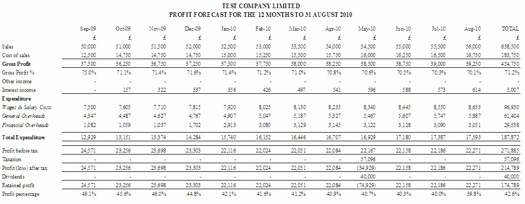 Profit and Loss Report Template New Cash Flow forecast Template 3 Years