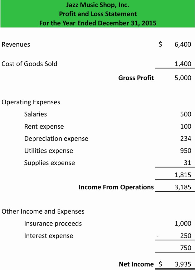 Profit and Loss Sheet Examples New Profit and Loss Statement Template form