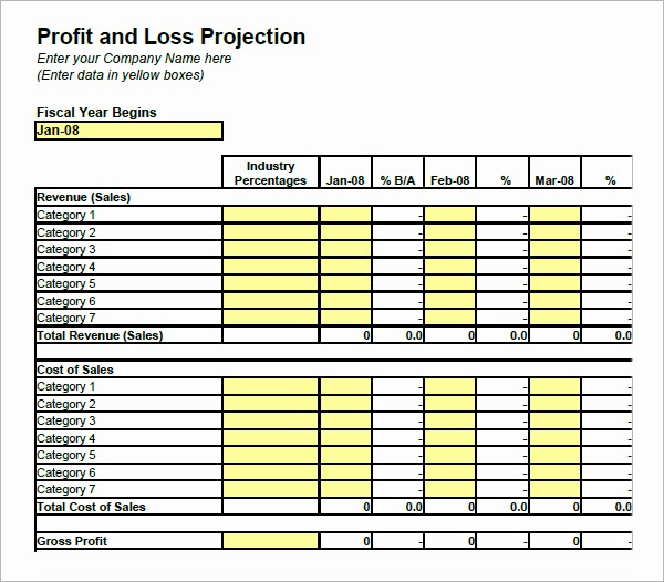 Profit and Loss Spreadsheet Example Unique 19 Sample Profit and Loss Templates