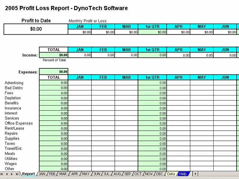 Profit and Loss Spreadsheet Example Unique Monthly Expense Report Template