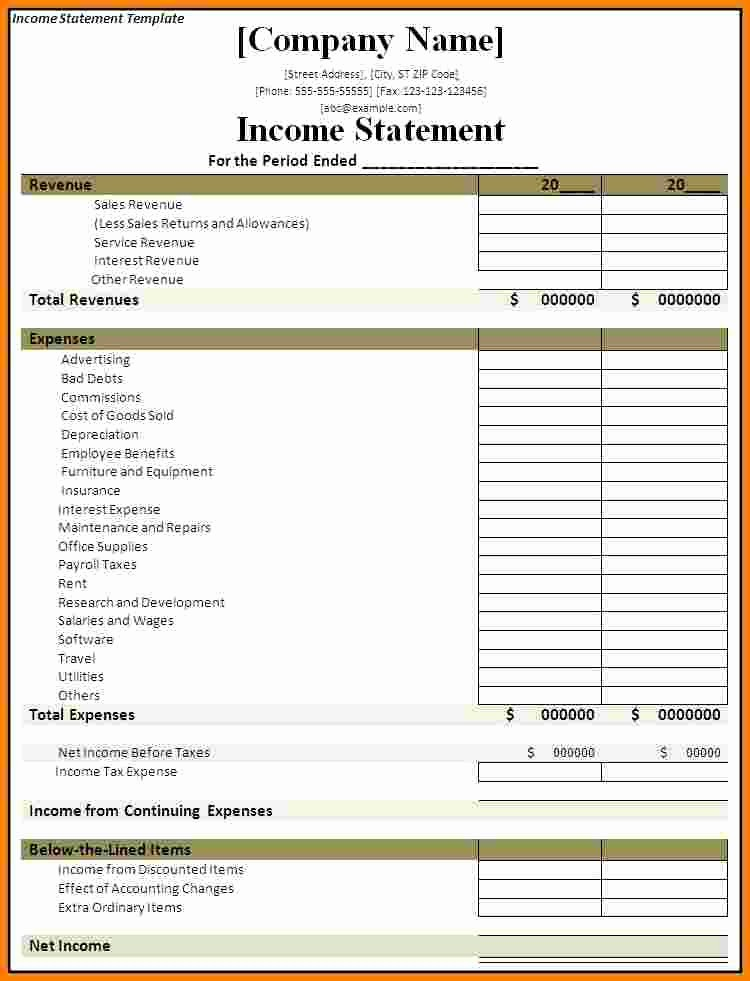 Profit and Loss Statements Template Luxury 9 Profit and Loss Statement Template