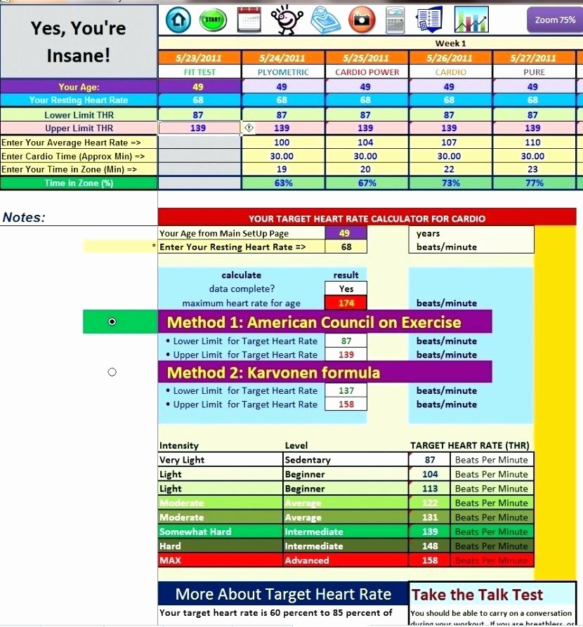Profit Margin Excel Spreadsheet Template Elegant Template Home Business Accounting Spreadsheet Fresh