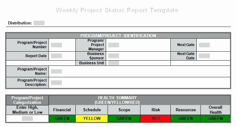 Program Management Status Report Template Beautiful Project Management Fice Project Portfolio Governance