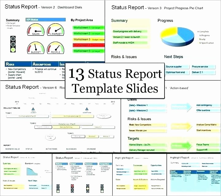 Program Management Status Report Template Best Of Program Management Status Report Template Project