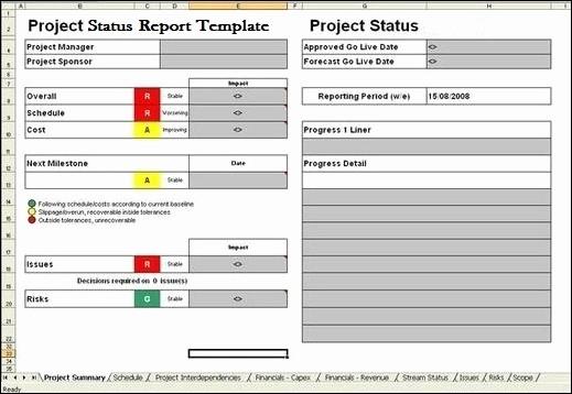 Program Management Status Report Template Inspirational Project Report Template