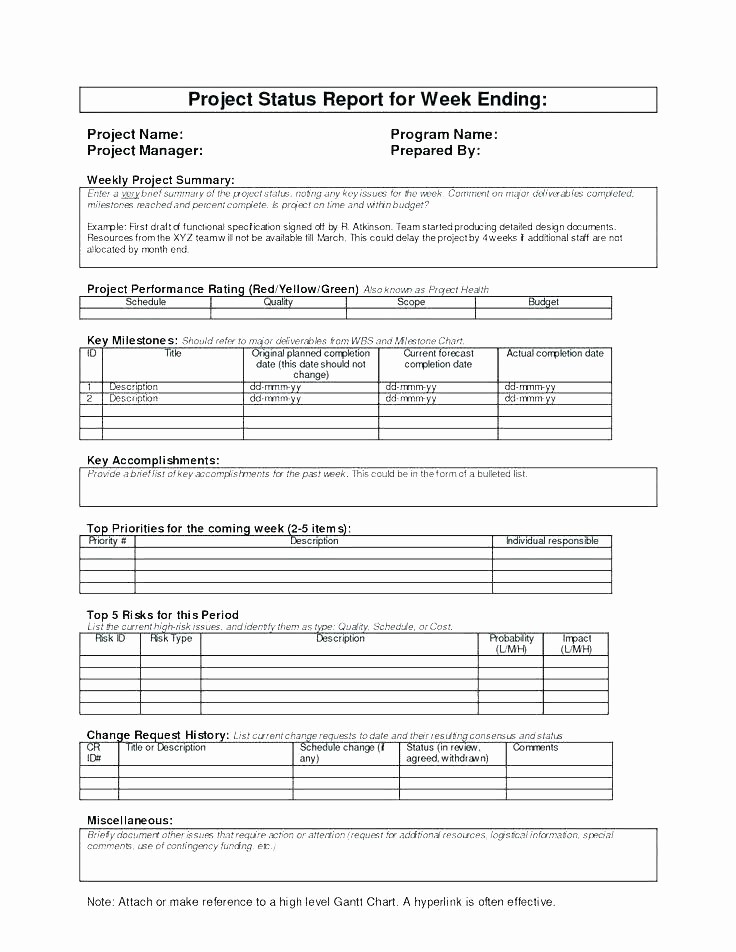 Program Management Status Report Template New One Page Project Status Report – Icojudge