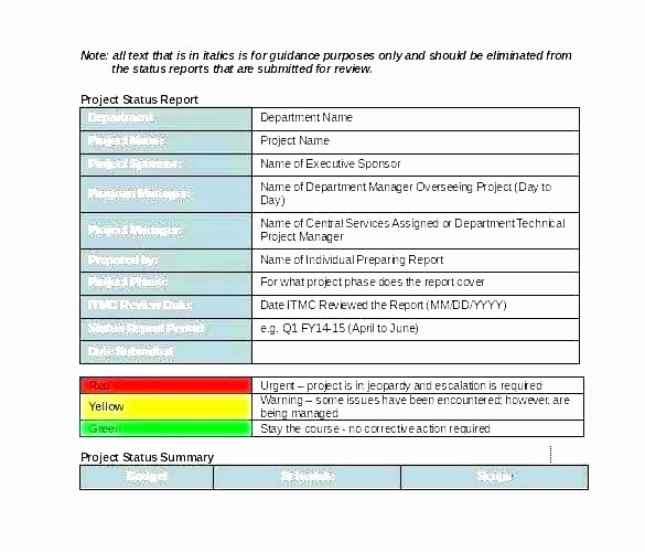 Program Management Status Report Template New Program Management Status Report Template Project
