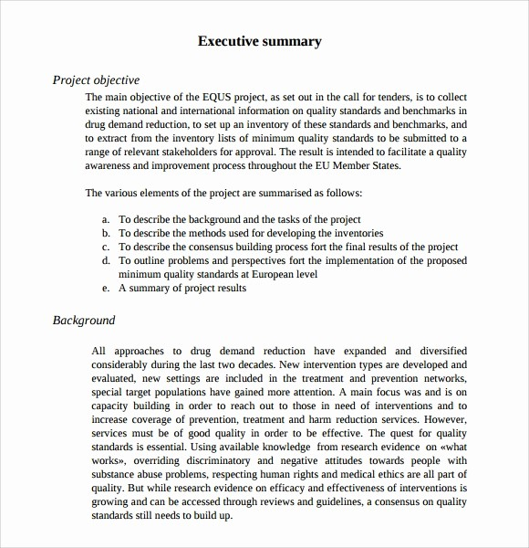 Project Executive Summary Template Word Beautiful 9 Executive Summary Templates for Free Download