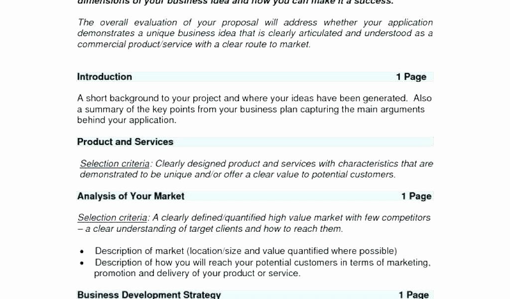 Project Executive Summary Template Word Fresh Executive Summary Proposal Template E Page Project