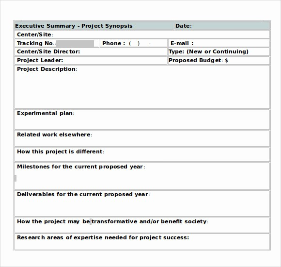 Project Executive Summary Template Word Lovely 9 Executive Summary Templates for Free Download