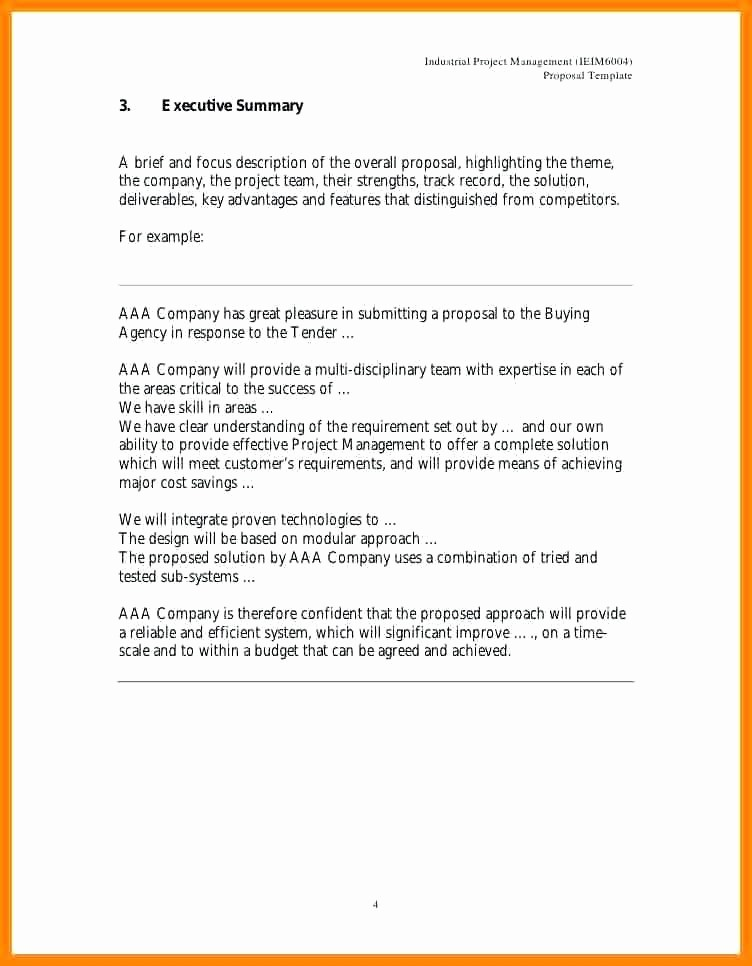 Project Executive Summary Template Word Luxury Project Management Executive Summary Template