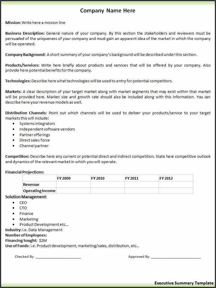 Project Executive Summary Template Word Unique 2 Executive Summary Templatefree Word Templates