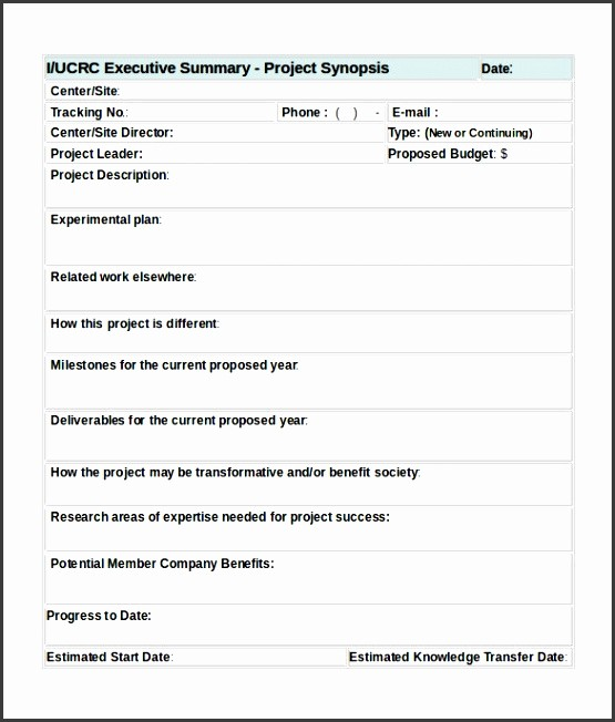 Project Executive Summary Template Word Unique 8 Project Summary Template Word Sampletemplatess