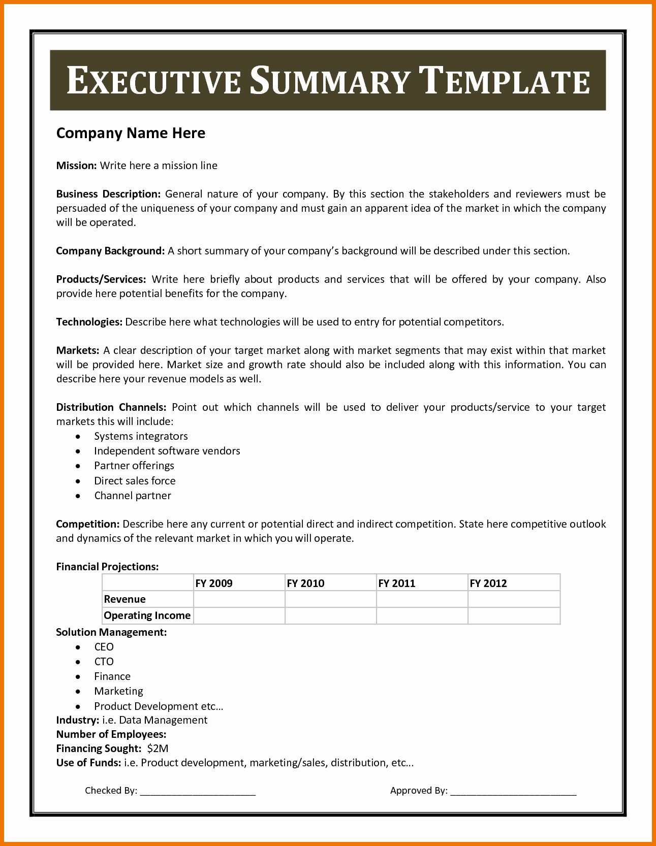 Project Executive Summary Template Word Unique Executive Report