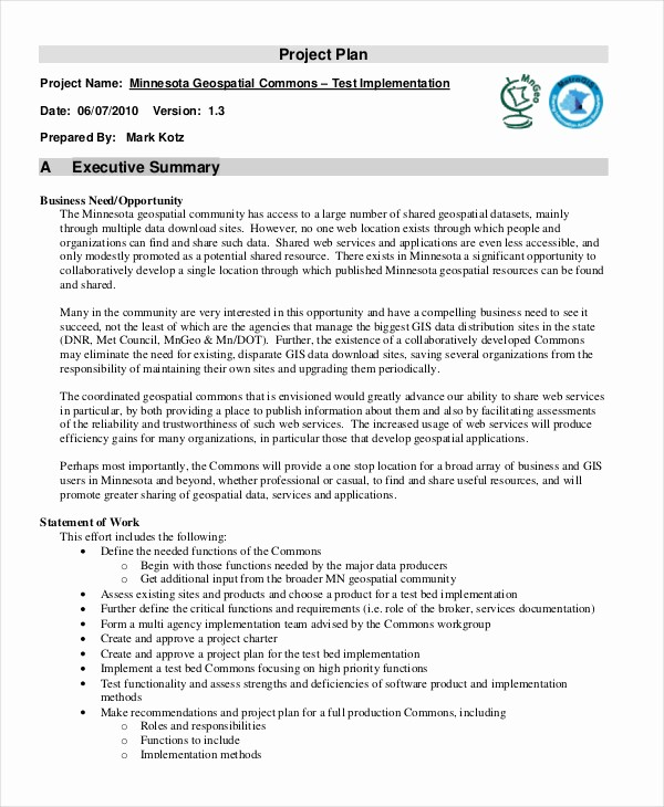 Project Executive Summary Template Word Unique Executive Summary Template 8 Free Word Pdf Documents