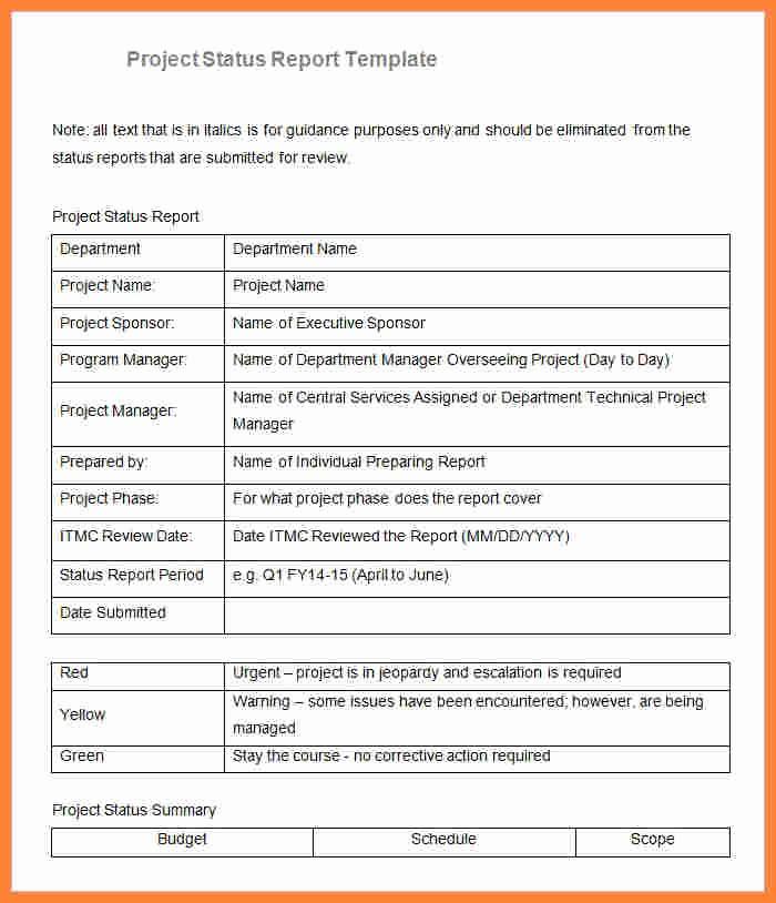 Project Management Progress Report Template Elegant 8 Sample Project Progress Report Template