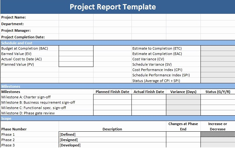 Project Management Progress Report Template Lovely Project Report Template