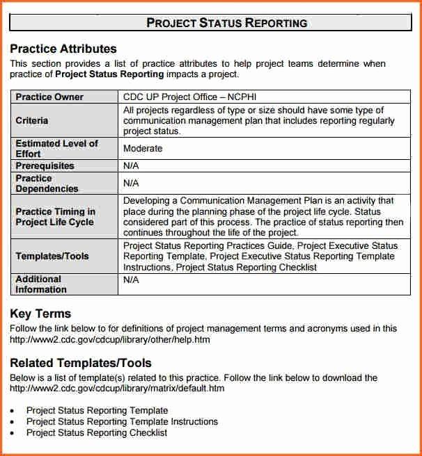 Project Management Progress Report Template Luxury Project Status Report Sample Project Status