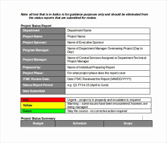 Project Management Status Report Example Elegant 19 Monthly Report Template Free Sample Example format