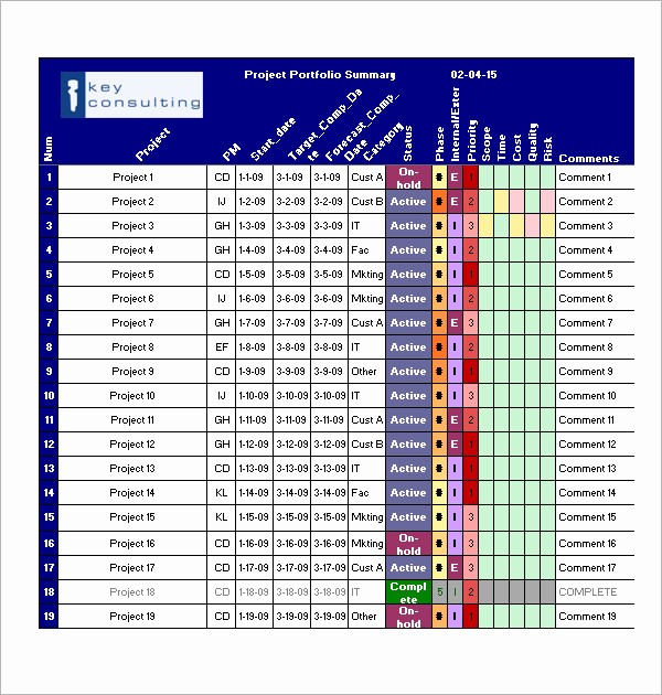Project Management Templates In Excel Luxury Project Management Template 12 Download Free Documents