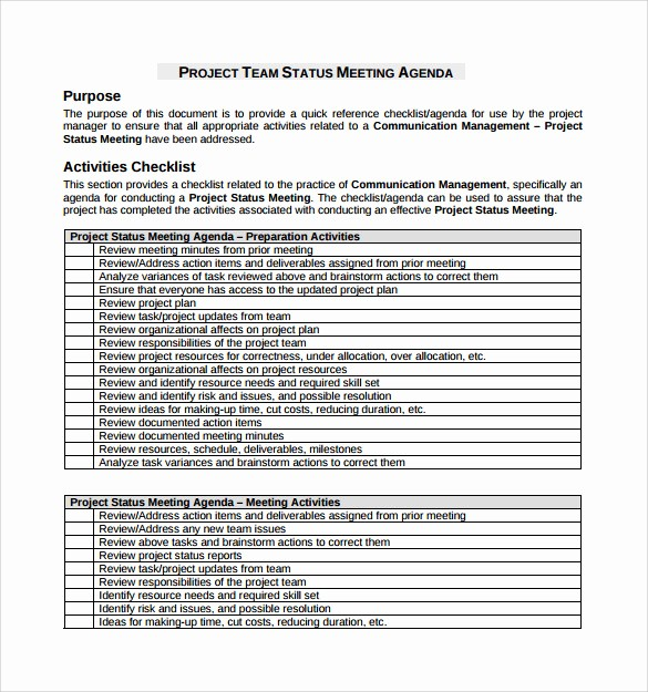 Project Meeting Minutes Template Excel Luxury 13 Project Meeting Minutes Templates to Download