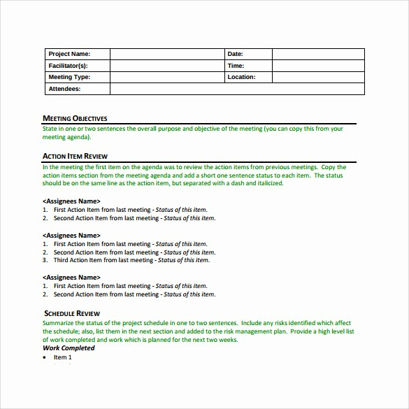 Project Meeting Minutes Template Excel New 13 Project Meeting Minutes Templates to Download