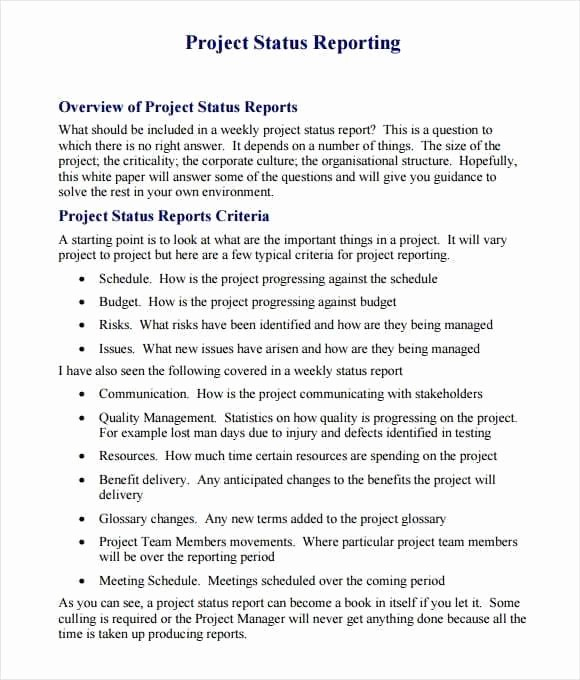Project Report format In Word Fresh 21 Free Project Report Template Word Excel formats