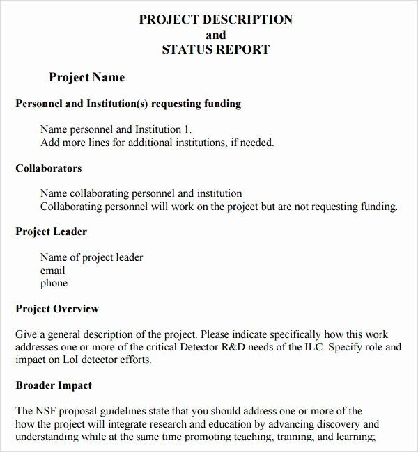 Project Report format In Word Inspirational Project Status Report Template 8 Download Free