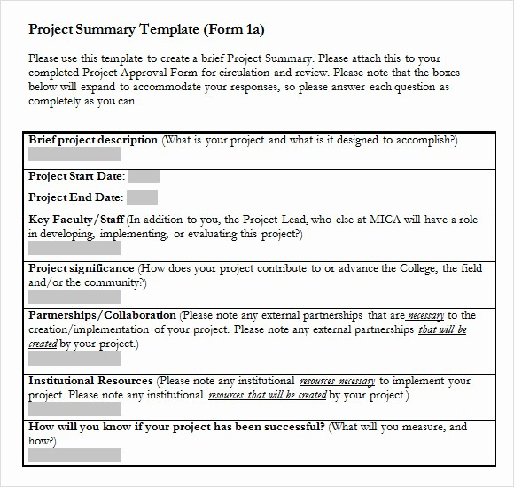 Project Report format In Word Luxury Sample Project Summary Template 9 Free Documents In Pdf