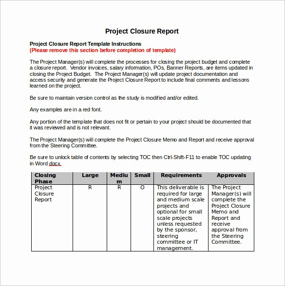 Project Report format In Word New 9 Sample Project Closure Report Template Examples